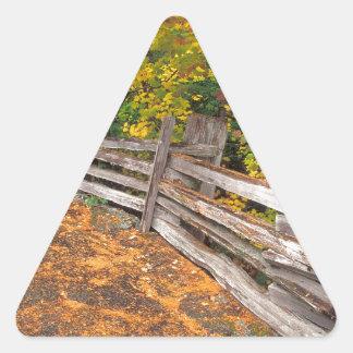 Autumn Split Rail Mount Rainier Triangle Sticker