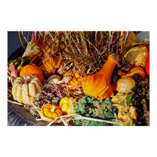 Autumn - Squash - Feeling squashed Poster