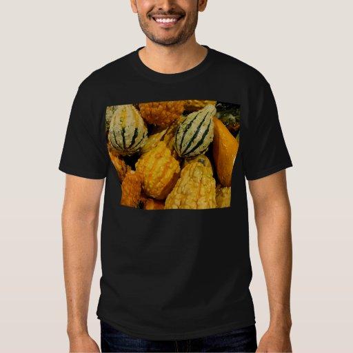 Autumn Squash T-Shirt