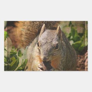 Autumn Squirrel at Lunch Rectangular Sticker