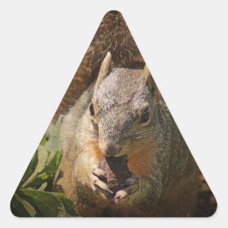 Autumn Squirrel at Lunch Triangle Sticker