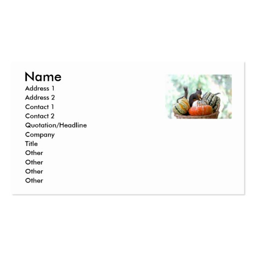 Autumn Squirrel Double-Sided Standard Business Cards (Pack Of 100)