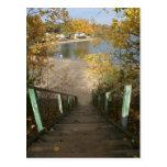 Autumn Staircase Postcards