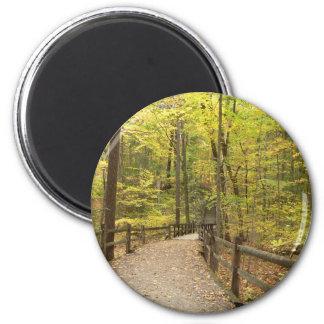 Autumn Stillness Magnet