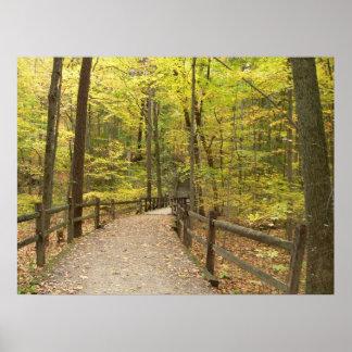 Autumn Stillness Poster
