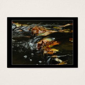 Autumn Stream Cascade Photo ATC Card
