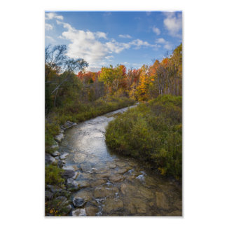 Autumn Stream Photo Print
