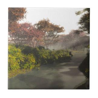 Autumn Stream Tiles