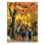 Autumn Stroll Postcard