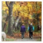 Autumn Stroll Tiles