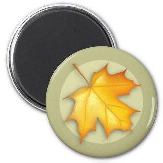 Autumn Sugar Maple Leaf Magnet