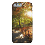 Autumn Sun in Central Park - New York City Barely There iPhone 6 Case