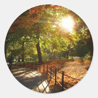 Autumn Sun in Central Park, New York City Classic Round Sticker