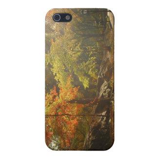 Autumn Sun Rays, Central Park, New York City Case For iPhone SE/5/5s