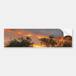 Autumn Sunset in Canberra Bumper Sticker