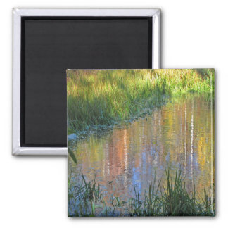 Autumn Swamp Reflections 2 Inch Square Magnet