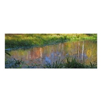 Autumn Swamp Reflections print