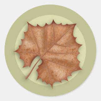 Autumn Sycamore Leaf Round Sticker