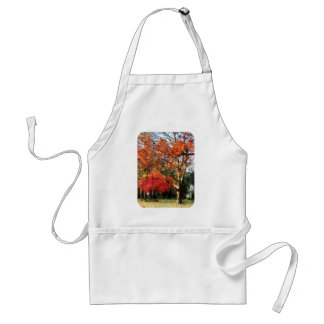 Autumn Sycamore Tree Aprons