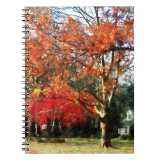 Autumn Sycamore Tree Notebook
