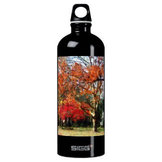 Autumn Sycamore Tree SIGG Traveler 1.0L Water Bottle
