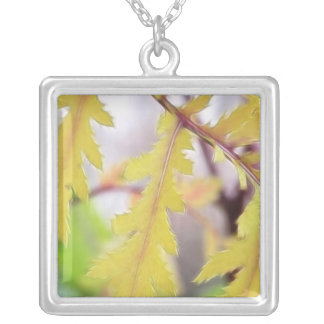 Autumn Tansy Leaves Square Pendant Necklace