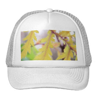 Autumn Tansy Leaves Trucker Hat