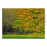 autumn thank you stationery note card