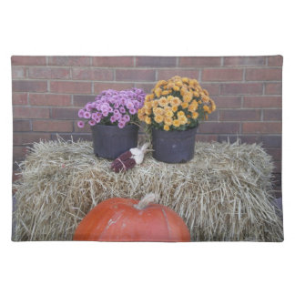 Autumn Thanksgiving Harvest Fall Scene Placemats