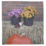 Autumn Thanksgiving Harvest Scene Napkin