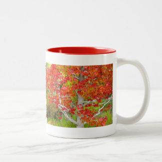 Autumn - The Liquid Amber Tree Two-Tone Coffee Mug