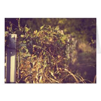 "Autumn, the year's last, loveliest smile  ""card card"