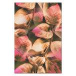 Autumn Tissue Paper