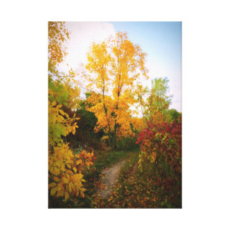 Autumn Trail Stretched Canvas Print