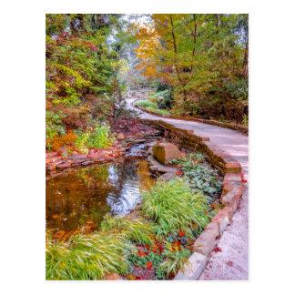Autumn Trail Postcard