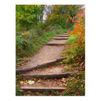 Autumn Trails Postcard