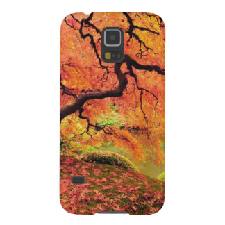 Autumn Tree Galaxy S5 Case