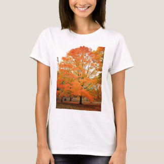 Autumn Tree in Central Park, New York City T-Shirt