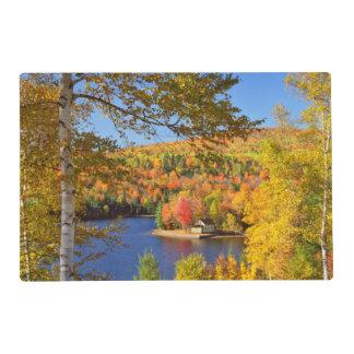 Autumn tree landscape, Maine Placemat