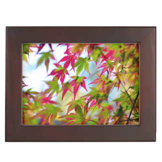 autumn tree leaf nature abstract detail background memory box