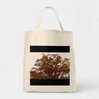 Autumn Tree Leaves Sky View Photo Canvas Bag