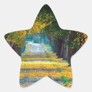Autumn Tree Lined Roadway Louisville Kentucky Star Sticker