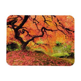 Autumn Tree Magnet