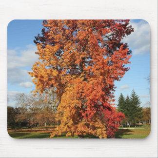 autumn tree mouse pad
