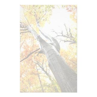 Autumn tree stationery