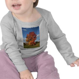 autumn tree tshirts