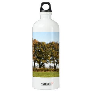 Autumn trees aluminum water bottle