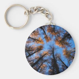 Autumn trees at  sunset keychain