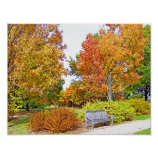Autumn trees bench Poster