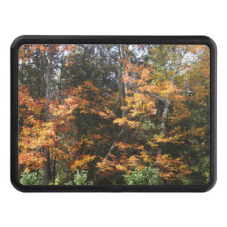 Autumn Trees Hitch Cover